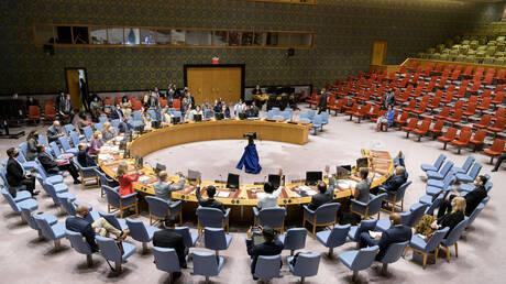 مجلس الأمن الدولي يعقد جلسة طارئة بشأن الأزمة السياسية بالصومال