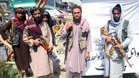 طالبان تلجأ إلى دستور ظاهر شاه