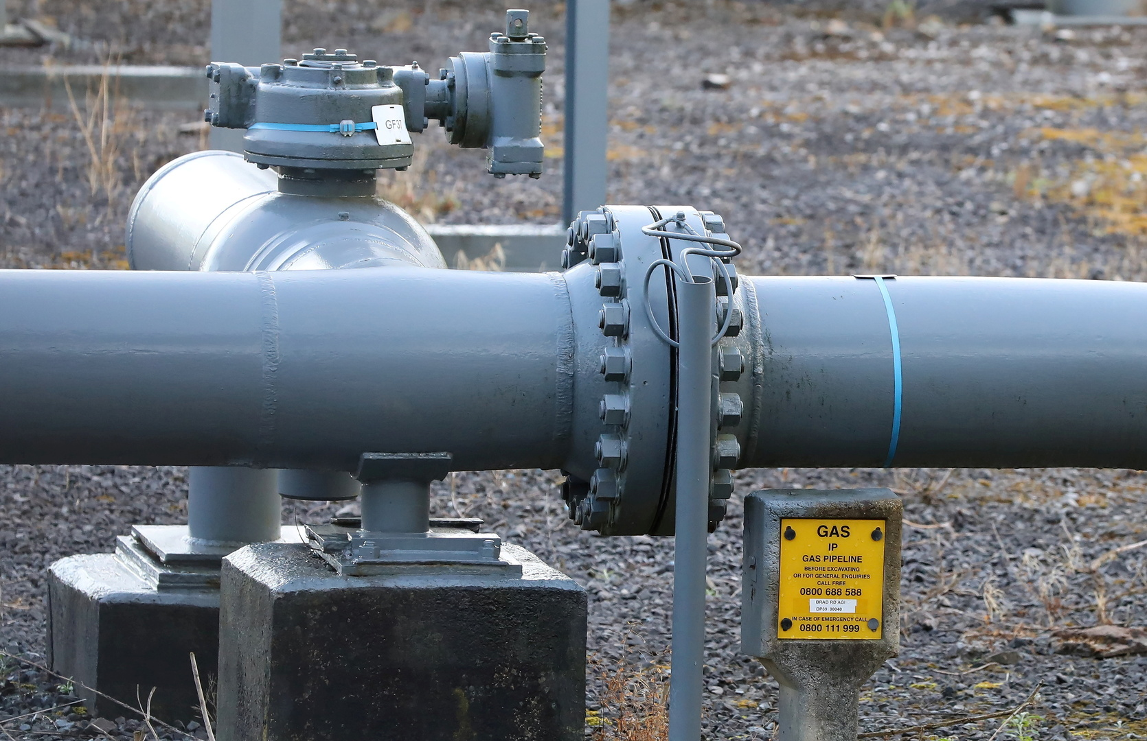 وزارة الطاقة الروسية: روسيا كانت دائما وستظل موردا موثوقا للغاز