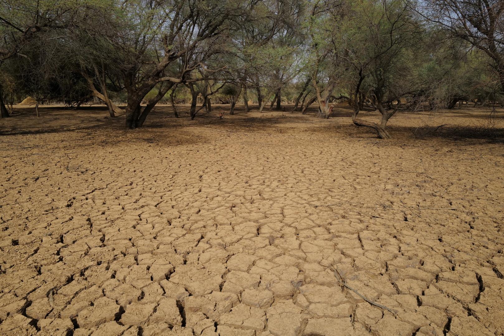 الجفاف والتصحر