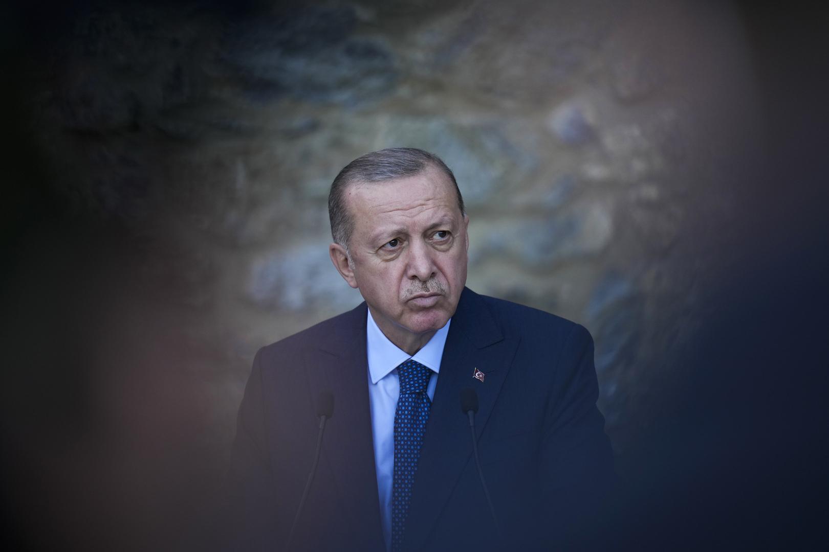 وسائل إعلام: الخارجية التركية حاولت إقناع أردوغان بعدم ترحيل السفراء الـ10