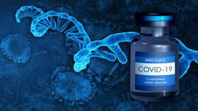 أيها الأقوى؟ .. الأجسام المضادة الناتجة عن العدوى الطبيعية أم لقاحات mRNA؟