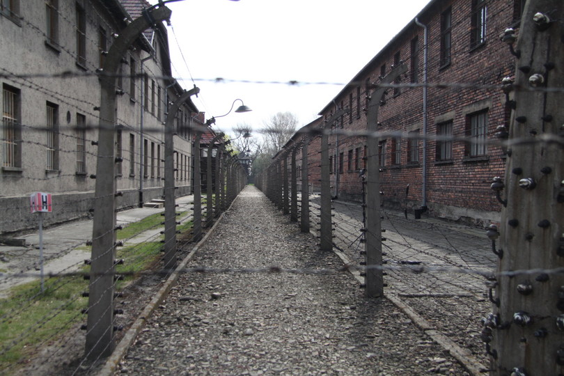 Paula Slier's family killed at Auschwitz