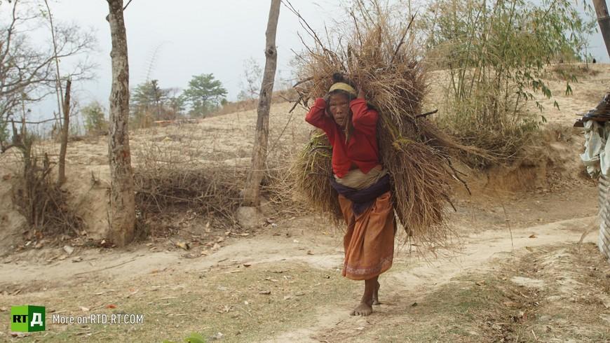 Nepal organ harvesting
