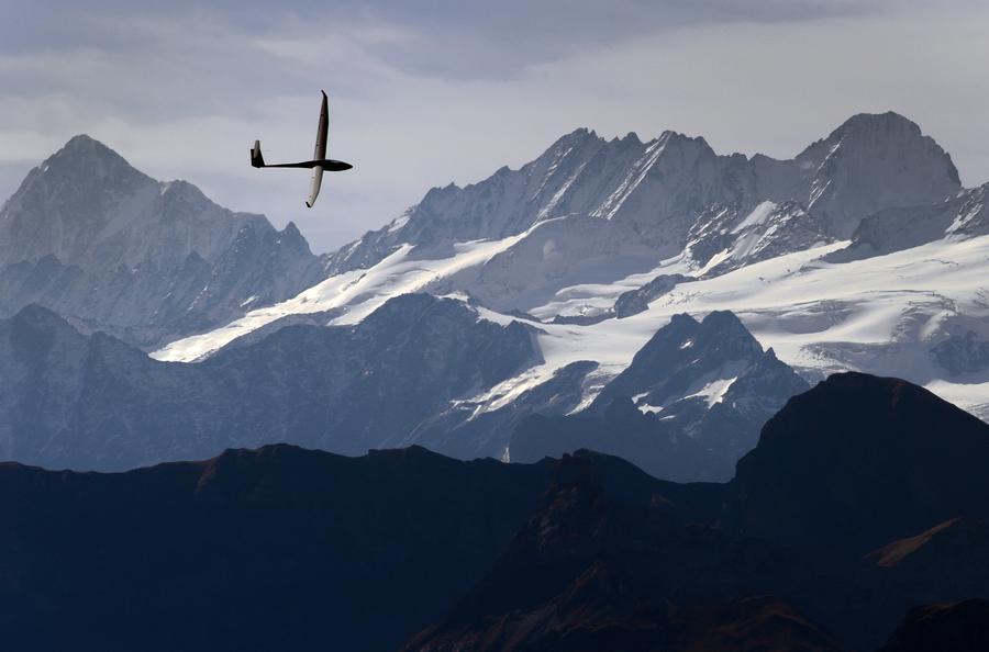 Швейцарцы проголосовали за ужесточение иммиграционных правил