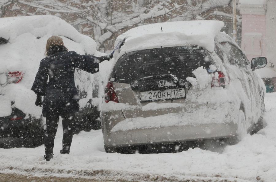 СМИ: Депутаты призывают заморозить тарифы на ОСАГО