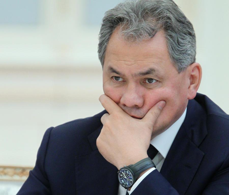 Сергей Шойгу: Россия разочарована снятием эмбарго на поставки оружия в Сирию