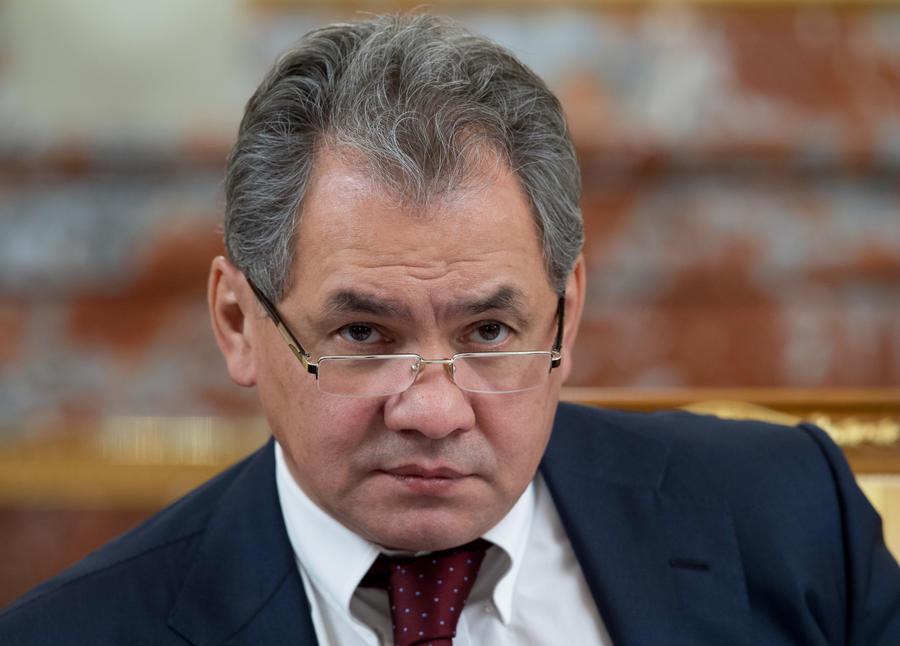 Сергей Шойгу: Россия готова принять участие в уничтожении химоружия в Сирии