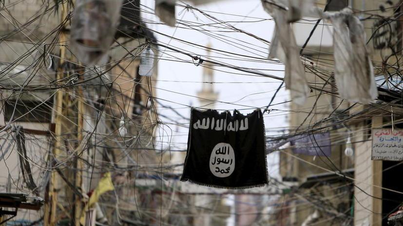Расследование RT: Международная реакция на новые доказательства сотрудничества Турции и ИГ