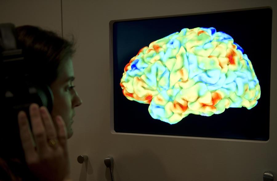 Все люди хорошие: Учёные доказали, что человеческий мозг изначально настроен на альтруизм