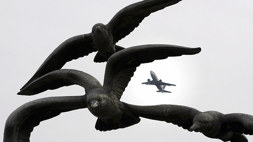 Птиц отпугнут от самолетов инфразвуком