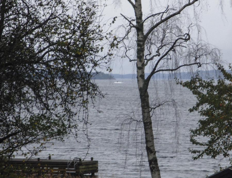 Немецкие СМИ: Швеция потратила более €2 млн, чтобы поймать рыбака Уве вместо русских спецназовцев