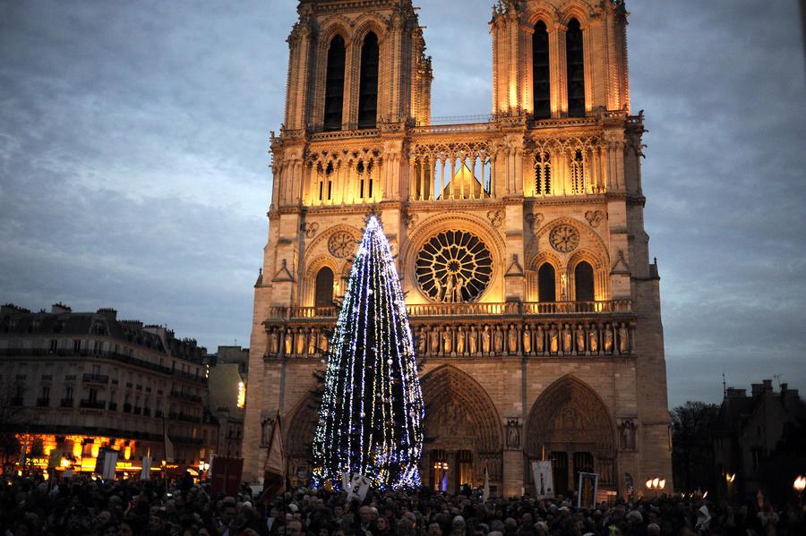 СМИ: Рождественская ёлка Путина дала французам надежду на свободу
