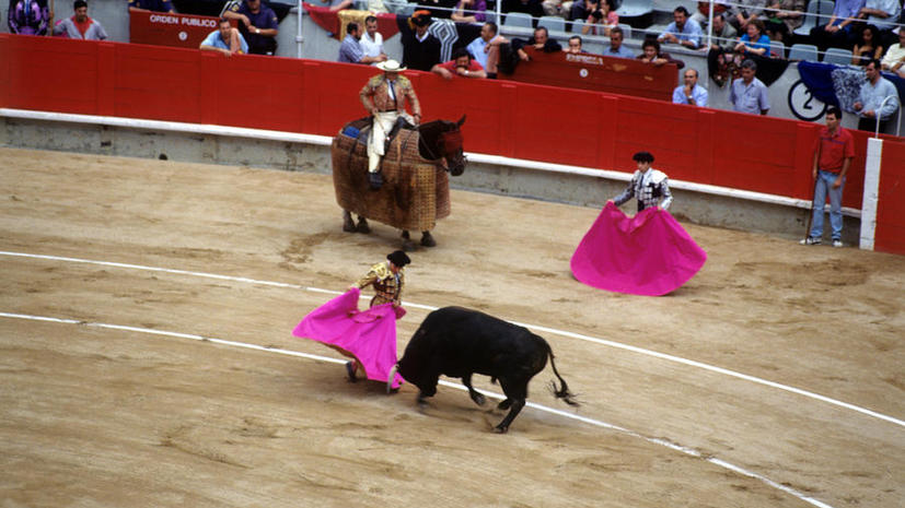 Испанский тореадор заплатит штраф за жестокое обращение с животными