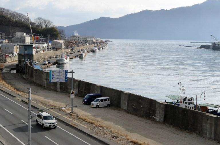 В японской префектуре Фукусима произошли два землетрясения