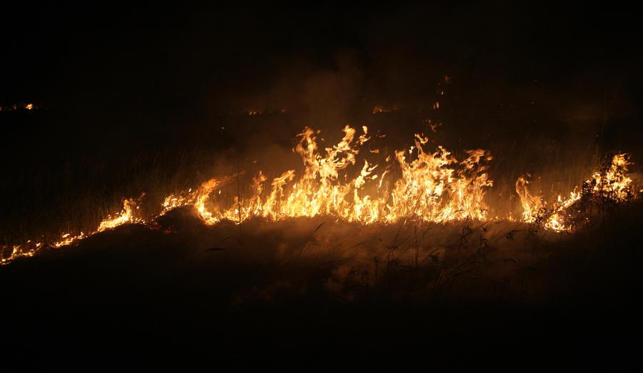 Пожар на полигоне под Самарой потушен