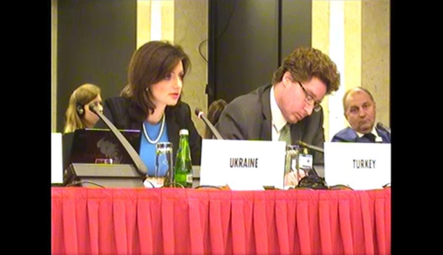 Вашингтон и Киев в ОБСЕ отвергли право России на братство с Украиной