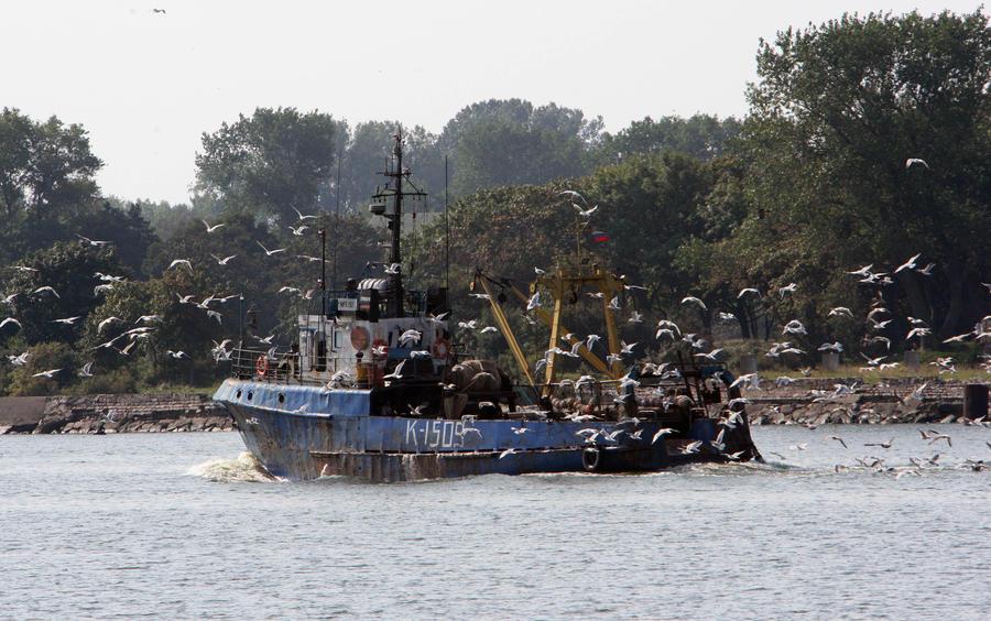 Иностранные корабли топят казну: содержание конфискованных судов дорого обходится России