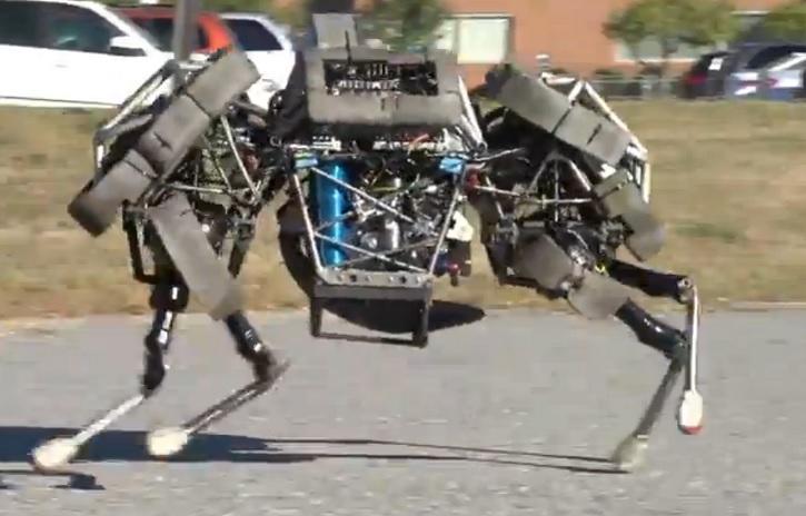 «Механическая кошка» создана в США по заказу Пентагона