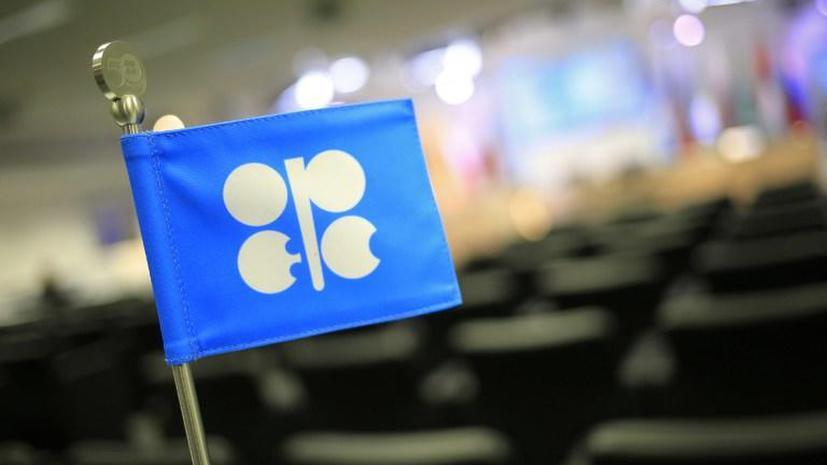 Саммит ОПЕК стартовал сегодня в Вене: экспортёры обсудят сокращение добычи нефти