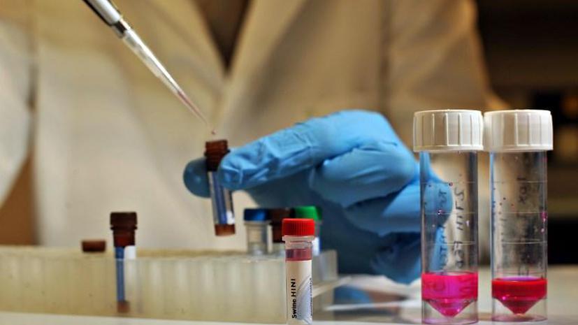 Новые исследования генетиков в Европе: у жителей континента оказался один предок