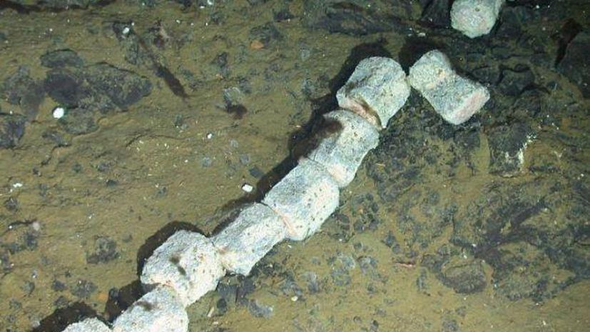 Исследователи морского дна сделали сразу девять открытий за одно погружение