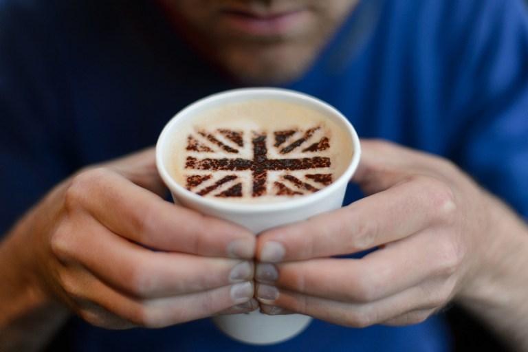 В Великобритании причиной ДТП все чаще становятся собаки и кофе