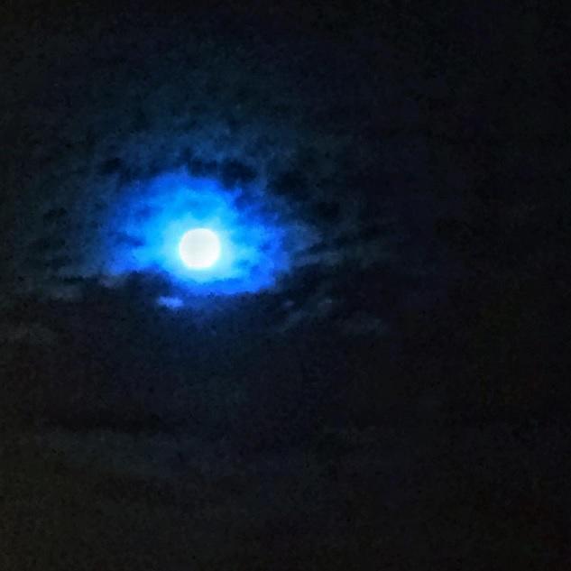 Пользователи соцсетей делятся фотографиями «голубой Луны»