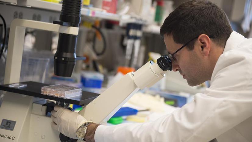 Учёные смогут избавить человечество от рака к 2050 году