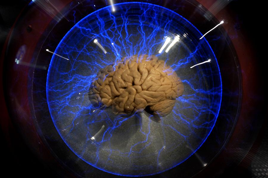Неправильное питание вызывает нарушения в мозге