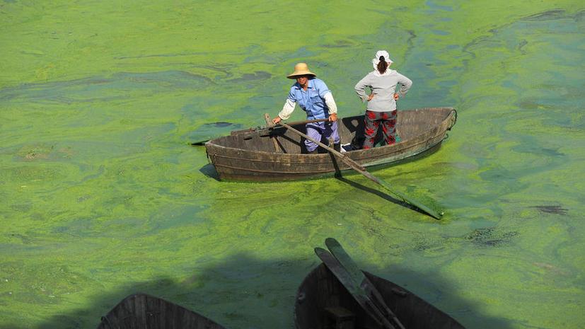 В Китае за загрязнение окружающей среды будут казнить