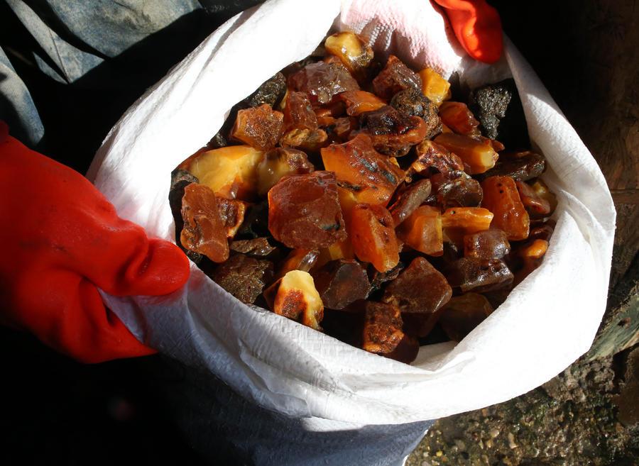 В Калининградской области нашли тайник с пятью тоннами янтаря