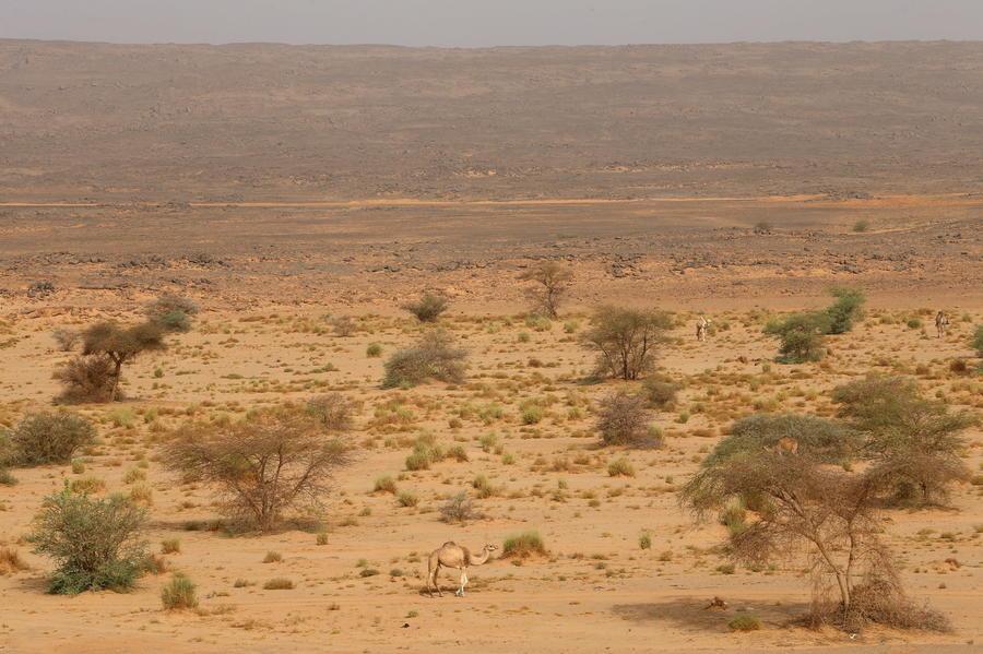 Учёные выяснили, как самое большое в мире озеро превратилось в безводную пустыню
