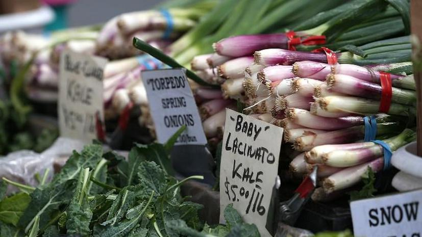 Британцы ежегодно выбрасывают 15 млн тонн продуктов питания