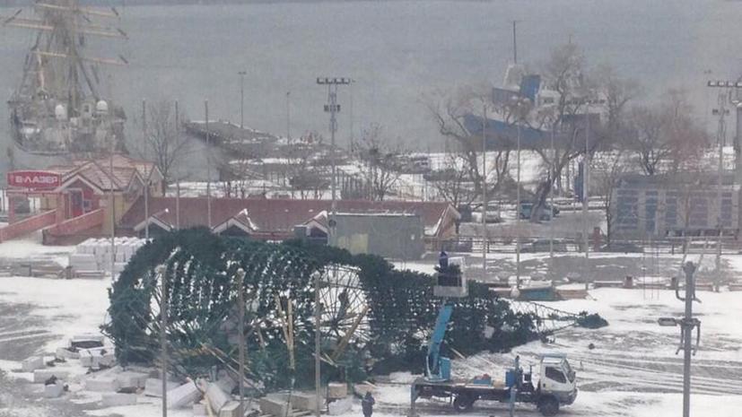 Главная новогодняя ёлка Владивостока упала на центральной площади