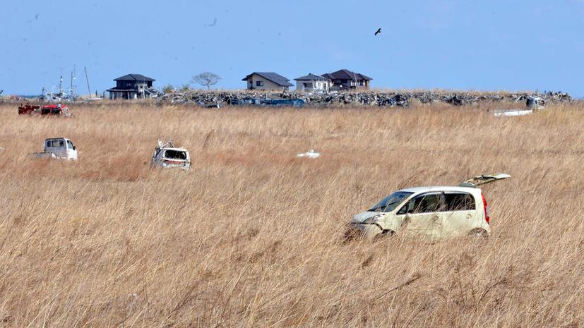 В Японии сеют рис в 15 км от аварийной АЭС «Фукусима»