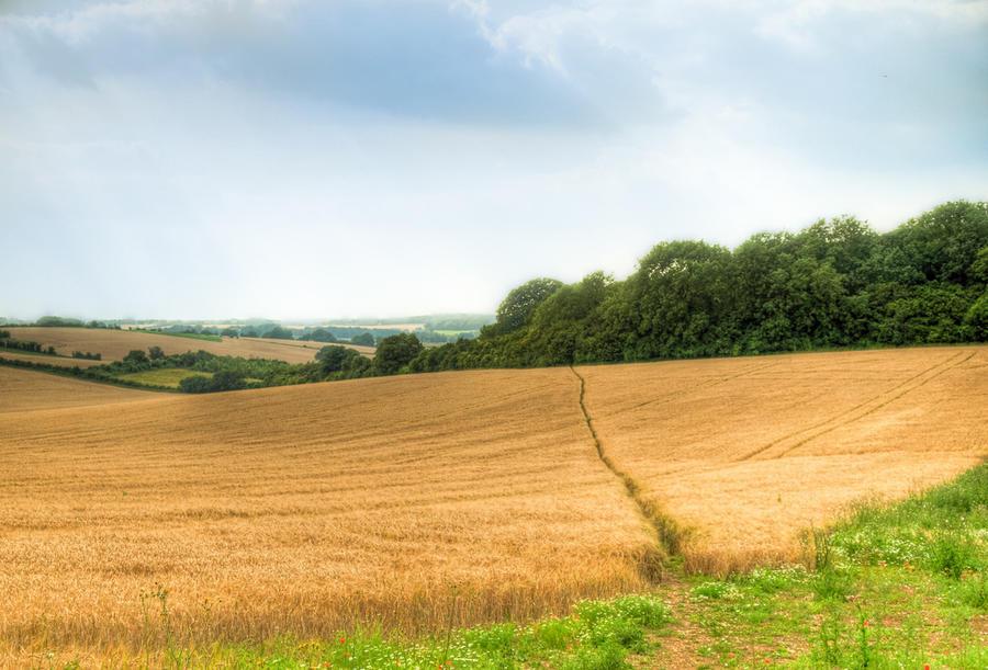 Добыча сланцевого газа может подорвать позиции Кэмерона на юге Англии