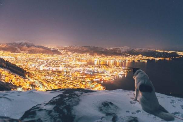 Норвежец, ушедший с работы, чтобы путешествовать со своим хаски, публикует потрясающие фото
