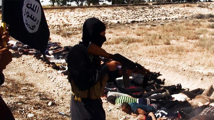Исследование: четверть молодых французов одобряют деятельность «Исламского государства»