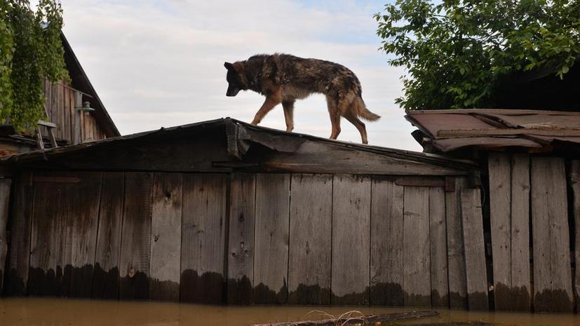 Жители Алтая пришли на выручку пострадавшим от сильного наводнения