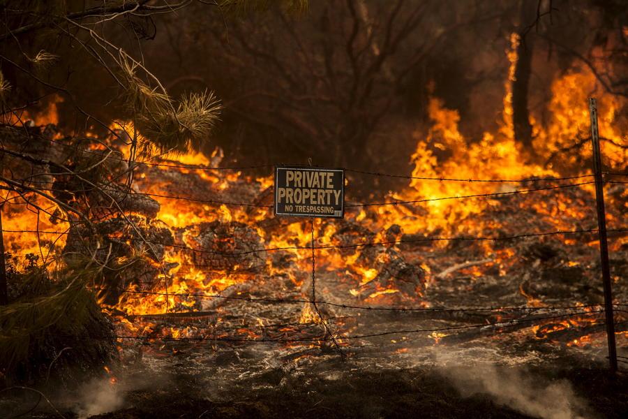 В Калифорнии объявлен режим чрезвычайной ситуации из-за лесных пожаров, есть жертвы