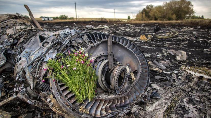 Сегодня Нидерланды опубликуют окончательный доклад по крушению MH 17 в Донбассе