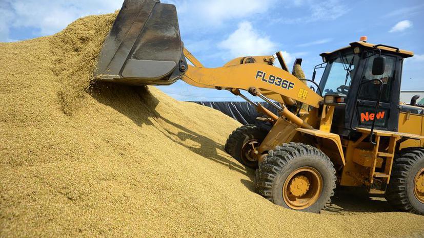 Что-то пошло не так: В госрезерве Украины недосчитались четверти миллиона тонн зерна