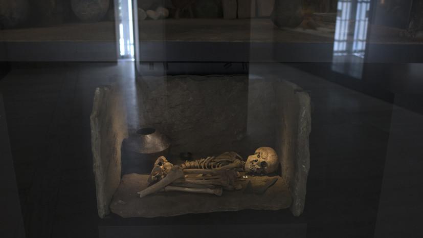 Наши королевские гены: половина европейцев, возможно, происходит от одного древнего вождя