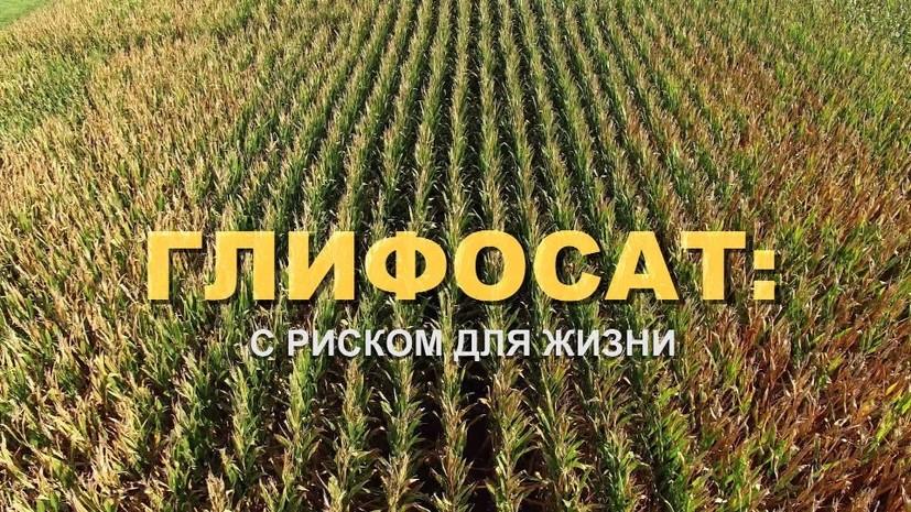 Тот ещё фрукт: фильм-расследование о химикатах в сельском хозяйстве на RTД