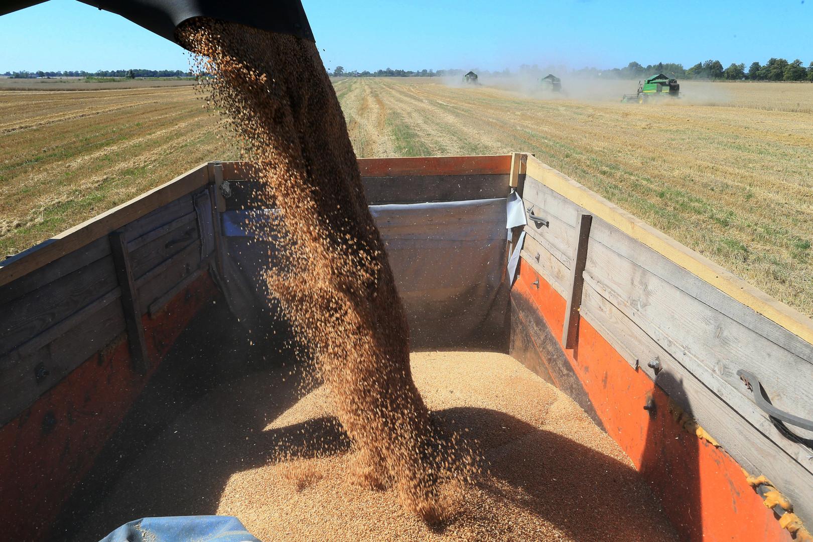 Россия поставит в Китай пшеницу, рис и пресную воду