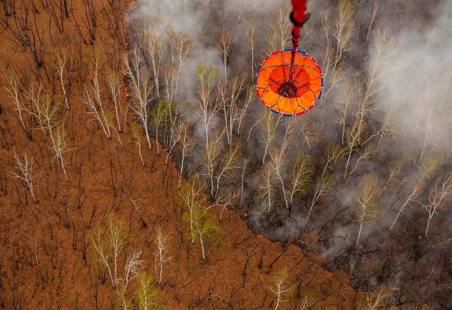 Тушение лесного пожара в Свободненском районе Амурской области.