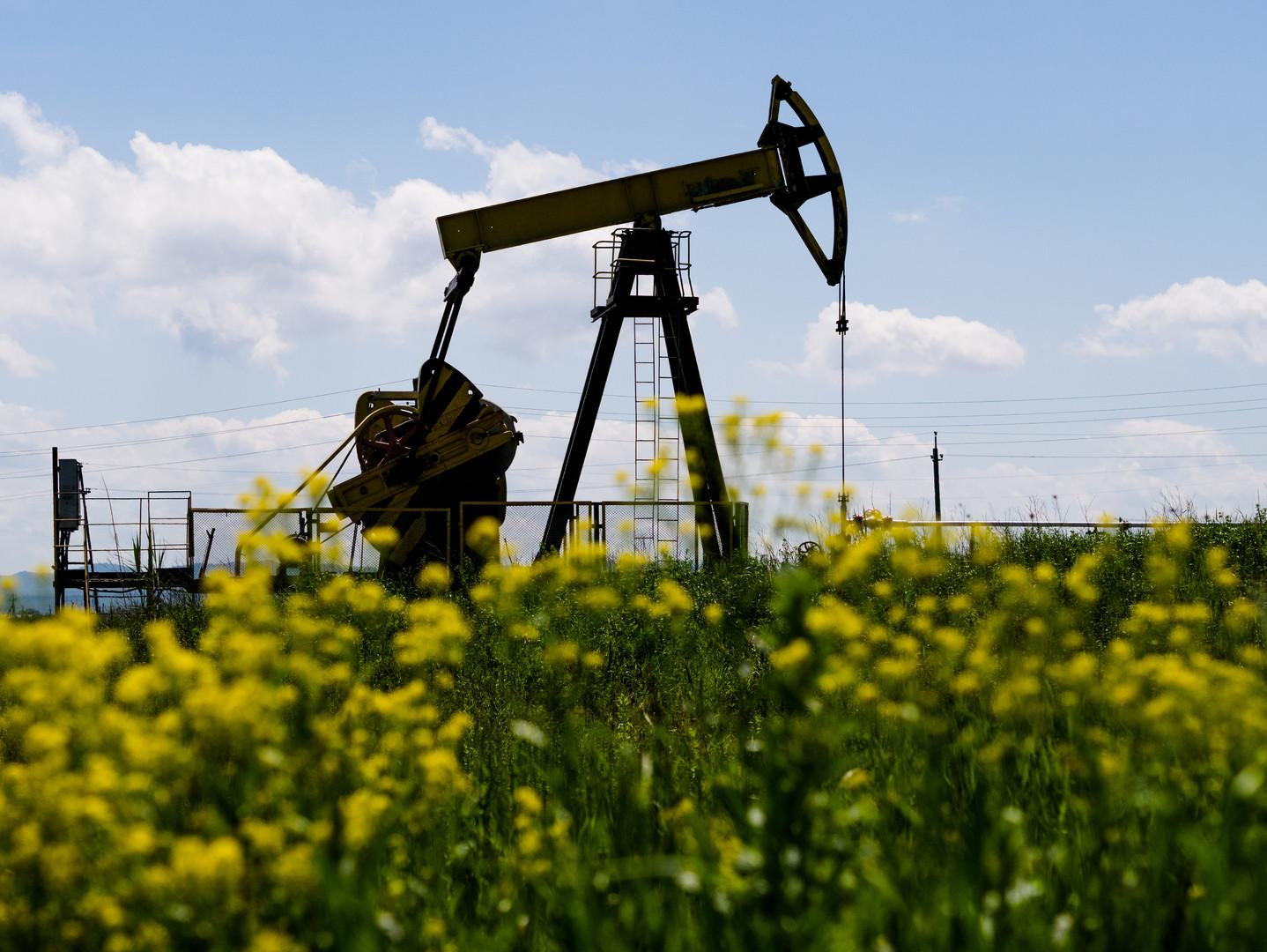 Новак рассказал о сроках восстановления нефтяного рынка