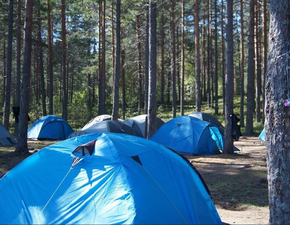 Погибшие в Карелии дети отправились в лодочный поход из стихийного палаточного лагеря