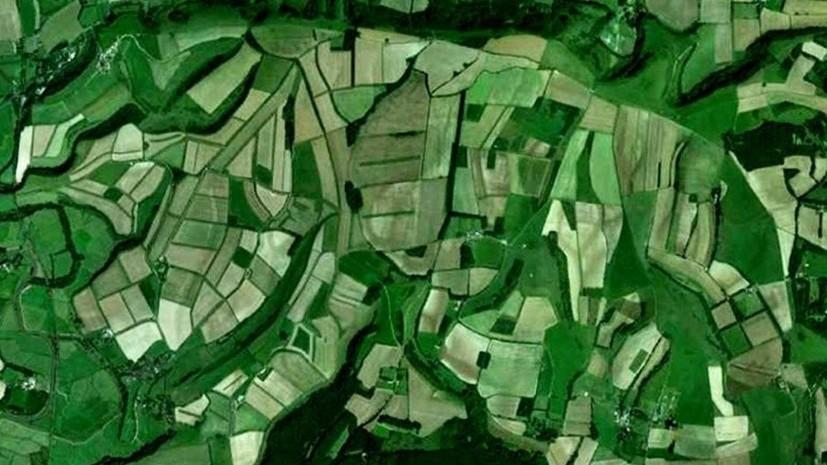 Британский учёный уверяет, что обнаружил древние скульптуры на картах Google. А вы видите?
